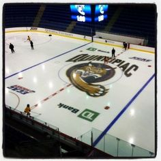 Quinnipiac University 's High Point Solutions Arena at the TD Bank Sports Center will host exhibition games on Saturday, Sept. 8 at 12:30 p.m. and Sunday, Sept. 9 at 9 a.m. between the USA Women and Connecticut Wolf Pack sled hockey teams.