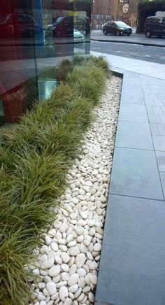 New House Ideas Exterior Stone Grass 35 Ideas Modern Landscaping, Front Yard Landscaping, Backyard Landscaping, Landscaping Ideas, House Landscape, Landscape Design, Garden Design, Monkey Grass, Garden Inspiration