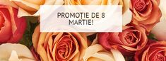 PROMOȚIE DE 8 MARTIE!!! În perioada 06.03.2018-12.03.2018 beneficiezi de o reducere specială de 60% la achiziționarea trandafirilor!!! Profită de ocazie și comandă butași de trandafiri atent selecționați! Detalii aici> https://gradinamax.ro/promotii/reduceri-primavara-butasi-de-trandafiri!