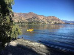 great way to spend the day 💕 ❤️Wanaka☀️ . 🏞Link in Bio to read this week's Wanaka Sun on our website Nikki Heath 📰 Lake Wanaka, Weather Forecast, Paddle, New Zealand, Sun, Website, Water, Travel, Life