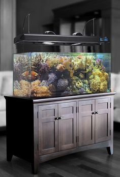 custom-aquarium-cabinets-and stands-for-freshwater-and-saltwater