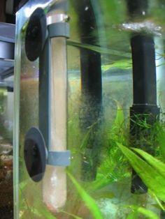 DIY Mini Brine Shrimps Hatchery
