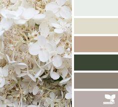 flora tones. Paint scheme