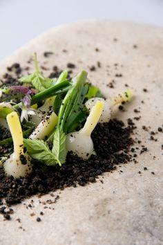 Onions, Foraged Herbs, and Malt Soil: Chef Rene Redzepi of Noma - Copenhagen, Denmark