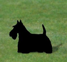 Scottish Terrier Shadow Woodcraft Pattern- I could have a whole clan of scotties!