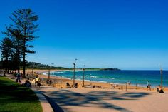 House sitter needed Dee Why, Northern Beaches, Sydney  Warringah,NSW Australia  View location mapAvailabilitySep 6,2013  For 4 weeks   Short Medium Term