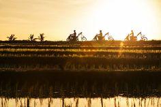 Biking through Bali is like exploring a wonderland Bali Sunset, Bike Parking, Bali Travel, Beautiful Sunset, Mountain Biking, Wonderland, Paradise, Island, Explore