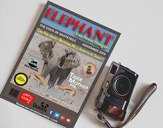 Magazine Cover Design, Editorial Design, New Work, Branding Design, Elephant, Behance, Profile, Marketing, Gallery