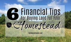 6 Financial Tips for Buying Land for Your Homestead - Accidental Hippies Homestead Land, Homestead Property, Off Grid Homestead, Financial Tips, Financial Planning, Survival Quotes, Survival Gear, How To Buy Land, Lost Money