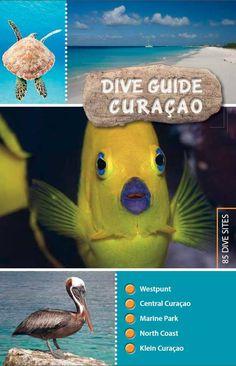 dive guide Curaçao - GoDolphins.nl