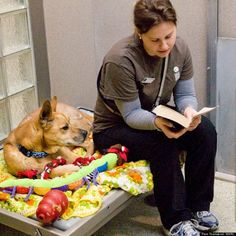 Why reading books to shelter dogs is so good: http://www.huffingtonpost.com/2014/01/30/reading-to-animals_n_4695430.html?utm_hp_ref=books&ir=Books