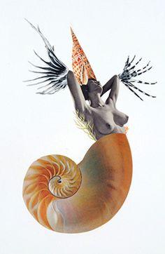 "Deborah Kelly, ""Dream of a Common Language"" 2d Art, Collage Art, Art Inspo, Rooster, Safari, Literature, Digital Art, Illustration Art, Symbols"