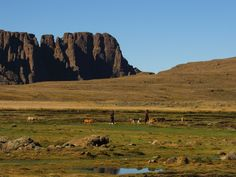 The Drakensberg Northern Traverse hike report is about a 6 day hike we did from the Sentinel at the Amphitheatre to finish at Cathedral peak hotel. Windy Day, Come And See, Day Hike, Atlantic Ocean, Campsite, Great Places, Monument Valley, Cathedral, Sunrise
