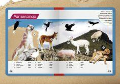 Pomasonqo - Corazón de Puma Animales