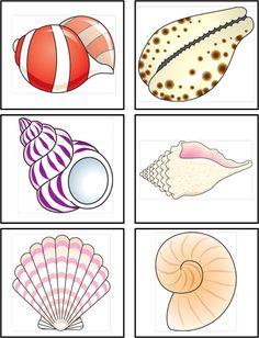 Jag heter Amina och är utbildad fritidsedagog. Jag arbetat på skola, fritidshem och förskola. Har insett att många verksamheter vill ta in mer och mer Montessori pedagogik i sin verksamhet. När förskolan jag arbetade på också ville det så insåg jag hur dyrt material ofta är och började leta runt på nätet. Här är resultatet: en blogg med allt gratis Montessorimaterial som jag har hittat och hittar på nätet. Ocean Theme Crafts, Ocean Themes, Zen Doodle, Doodle Art, Hobbies And Crafts, Crafts For Kids, Shell Drawing, Sea Animal Crafts, Ocean Habitat