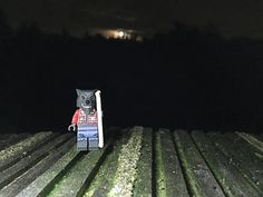 Wandelbos Wolf Guy. Lego Minifigures 14 Monsters Wolf Guy photographed during the full moon at night on 27 October 2015 in the Wandelbos in Tilburg to celebrate Halloween. #WandelbosWolfGuy #LegoMinifigures14Monsters #LegoMinifigures14 #Lego14 #WolfGuy #werewolf #lycanthrope #FullMoon #night #October #Wandelbos #woods #park #Tilburg #Netherlands #Nederland #Halloween