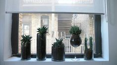 Look! - Using Glass Cylinder Vases