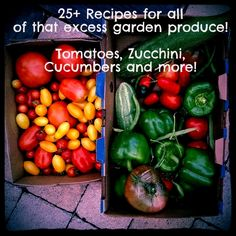I had so much excess produce from my garden this past season. So I found over 25 recipes for all that excess garden produce~tomatoes, zucchini, cucumbers and more!