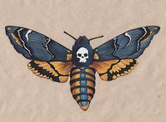 Death'shead Hawkmoth by JenniPhillipsArt Moth Tattoo Design, Tattoo Designs, Moth Drawing, Skull Moth, Wings Sketch, Hawk Tattoo, Deaths Head Moth, Moth Wings, Butterflies
