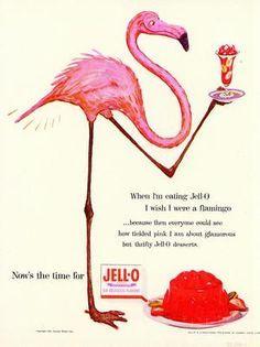 Vintage Jello Ad - Flamingo