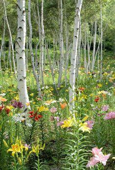 24 Woodland Garden Design - fancydecors