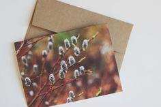 spring willow blank notecard