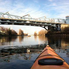 Kayak Tour of Lake Union Review Buy Now