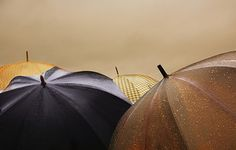 Common Terms to Use When Talking About The Rain - By Wlingua