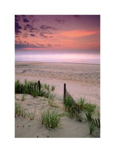 Sunrise, Folly Beach, South Carolina Art Print - Now this would make a wonderful painting :)