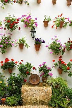 wall plants Cordoba spain