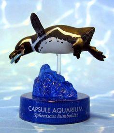 Spheniscus humboldti Meyen, 1834; Humboldt Penguin (Sphenisciformes: Spheniscidae). Kaiyodo Capsule Aquarium 3 - Shinagawa Aquarium. Length ...