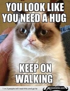 10 Times Grumpy Cat Was Not Interested In Your Hugs Source by videos wallpaper cat cat memes cat videos cat memes cat quotes cats cats pictures cats videos Grumpy Cat Quotes, Funny Grumpy Cat Memes, Cat Jokes, Funny Animal Jokes, Funny Animal Pictures, Cute Funny Animals, Animal Memes, Funny Cats, Funny Memes