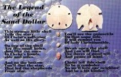 Image result for sand dollar postcards