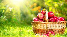 An Apple A Day…