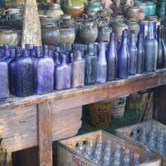 purple bottle collection