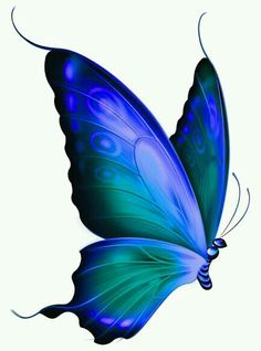 These were Liz's favorites! Every blue butterfly is a reminder of my dear friend
