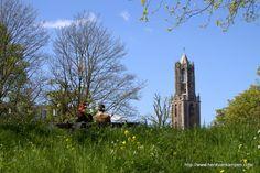Uitzicht op de Dom, Utrecht