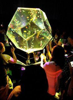 Art Aquarium, visitors