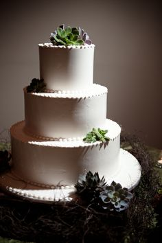 http://www.mywedding.com/blog/wp-content/gallery/marney-booth/simple-wedding-cake-with-succulents.jpg