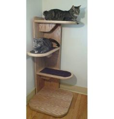 Alexa Corner Cat Tree - space saver, could be up next to a window....looks like a happy place for a multi-cat home. Wonder if it could be a DIY project?