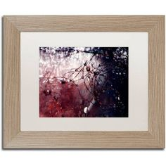 Trademark Fine Art Galaxy Far Away Canvas Art by Beata Czyzowska Young, White Matte, Birch Frame, Size: 16 x 20, Brown