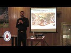Virgen de Guadalupe y lo que oculta Parte 2: Impactante, la realidad, conoce la verdad Parte 2 - YouTube