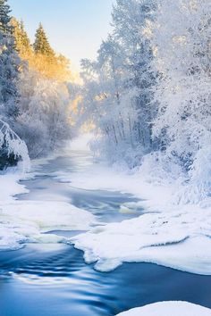 swansong-willows: Winter River ~ By Ilari Lehtinen (via Pinterest: Discover and save creative ideas)