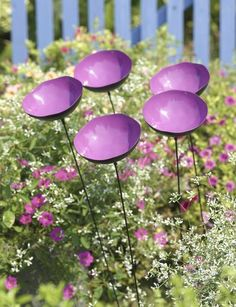 Poppy Sways. would be fun for a breezy area. They come in purple, orange, red, and copper