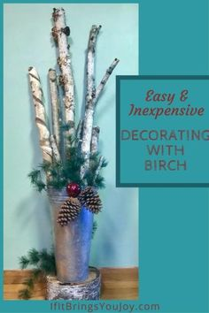 Easy & Inexpensive Decorating With Nature – Easy and inexpensive DIY home decor… Easy & Inexpensive Decorating With Nature – Easy and inexpensive DIY home decorating ideas using items found in nature. Stylish ideas for decor – Inexpensive Home Decor, Cute Home Decor, Unique Home Decor, Cheap Home Decor, Birch Tree Decor, Birch Branches, Branch Decor, Birch Decorations, Birch Logs