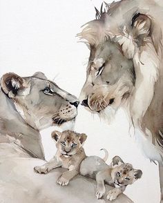 Fox Watercolor Print on Canvas or Watercolor Paper – Mela Wicik - Baby Animals Animal Drawings, Art Drawings, Fuchs Illustration, Watercolor Fox, Watercolor Paper, Tattoo Watercolor, Lioness Tattoo, Lion Family, Lion Love