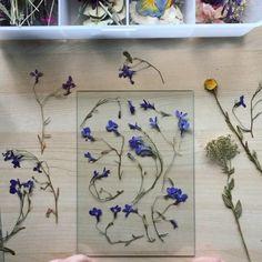 Flower Picture Frames, Flower Collage, Flower Artwork, Flower Frame, Pressed Flowers Frame, Dried And Pressed Flowers, Pressed Flower Art, Flower Crafts, Diy Flowers