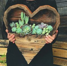 Cute wooden heart planter. Could put real or fake plants in this to add color and life to your walls. I would do fake because I don't have green thumbs. Love the succulents.