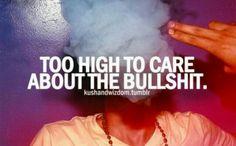 Stoners  #bullshit #toohigh #quote