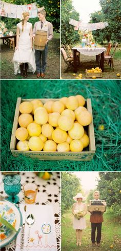 stunning orchard party